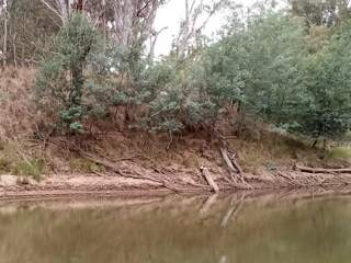 Goulburn River bank monitoring during March