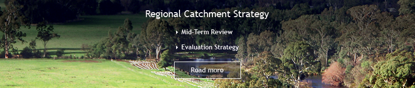 Banner: Regional Catchment Strategy